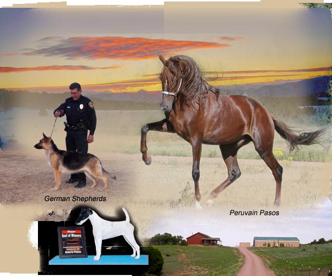 Eight Mile Ranch Colorado